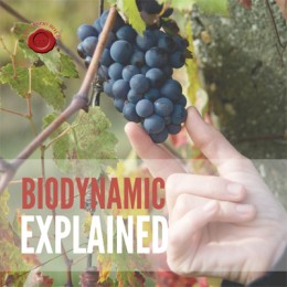 BIODYNAMIC EXPLAINED