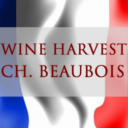 HARVEST REPORT 2017 - Chateau BEAUBOIS