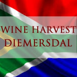 WESTERN CAPE HARVEST