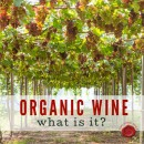 WHAT IS ORGANIC WINE