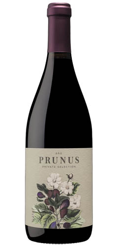 Prunus Selection Dao 2015